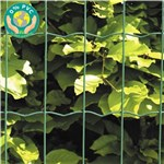 Havehegn, maske 5 x 10 cm - 80 cm x 10 meter Grøn