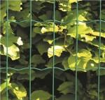 Havehegn, maske 5 x 10 cm - 120 cm x 20 meter, grøn