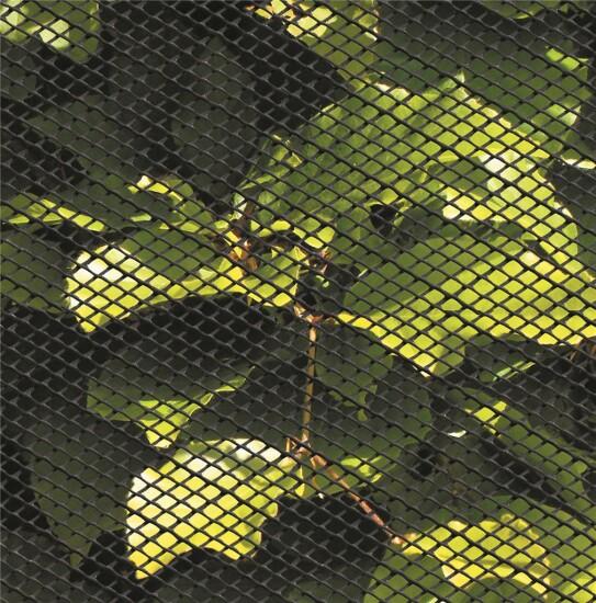 Insektnet plast 0,6 x 10 m, sort