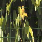 Volierenet grøn, maske 19 x 19 mm - 100 cm x 5 m Grøn