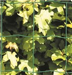 Havehegn, maske 10 x 10 cm - 110 cm x 20 meter, grøn