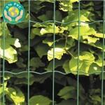 Havehegn, maske 5 x 10 cm - 100 cm x 10 meter Grøn
