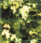 Havehegn, maske 10 x 10 cm - 100 cm x 20 meter, grøn