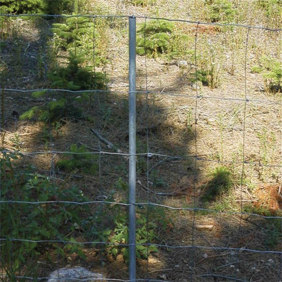 Galvaniseret hegnspæl 200 cm